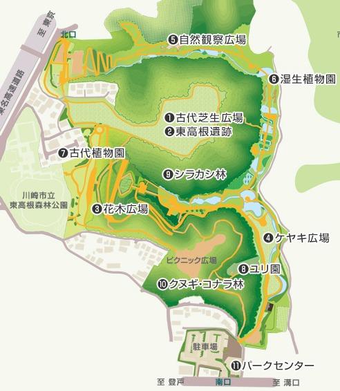 東高根森林公園の案内図