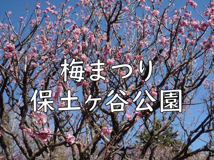 梅まつり(保土ヶ谷公園)