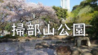 掃部山(かもんやま)公園