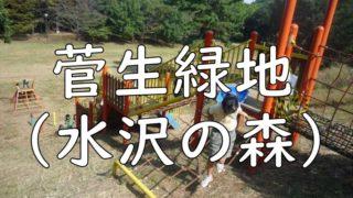 菅生緑地(水沢の森)