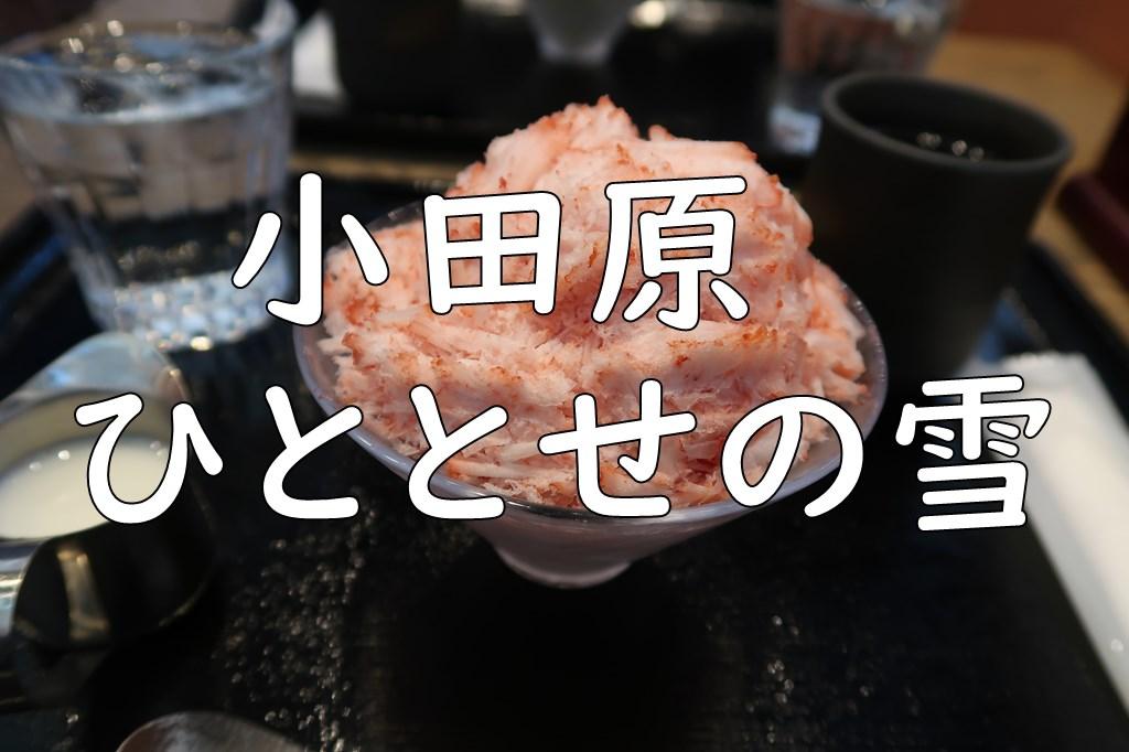 小田原「ひととせの雪」