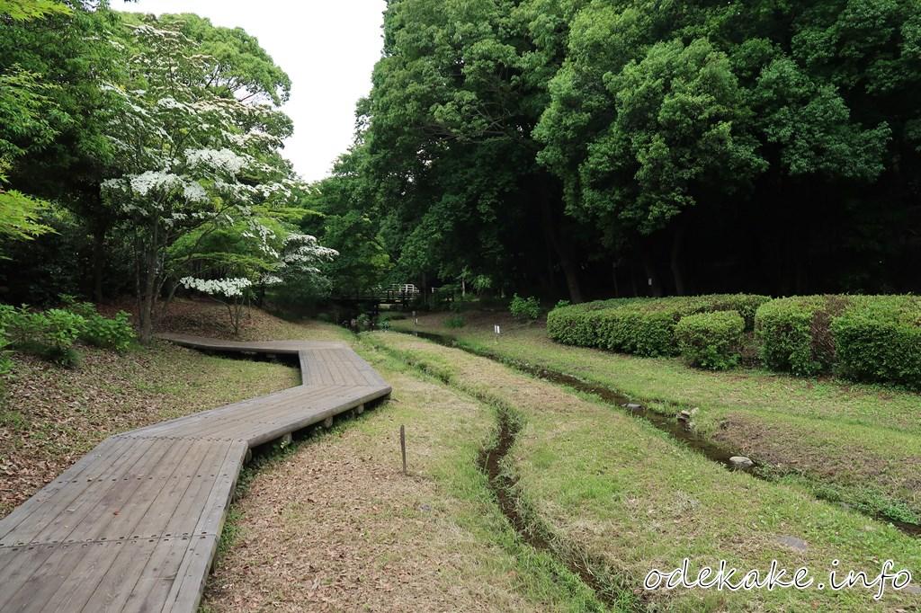 道保川公園の川