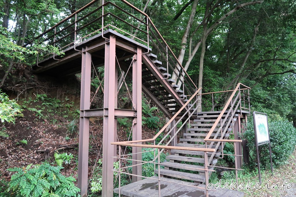 道保川公園の階段