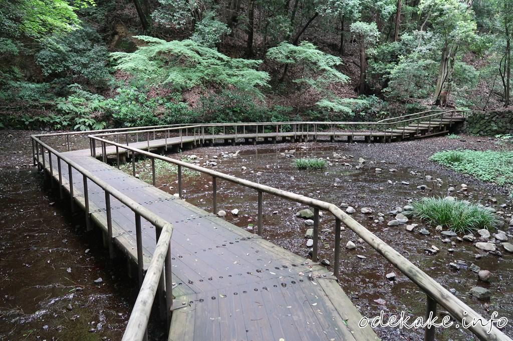 道保川公園の木道