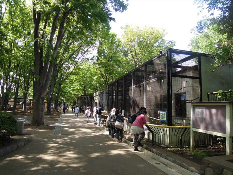 動物園内の様子