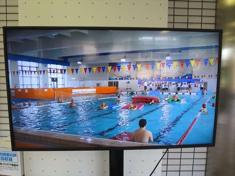 北体育科のプール