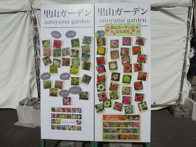 里山ガーデンの花紹介