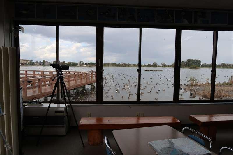 水鳥観察舎の中