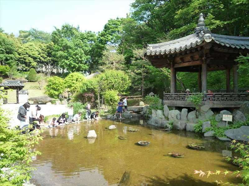 庭園内の池