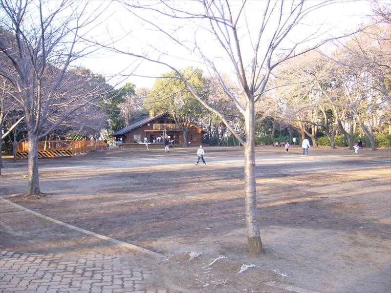 綱島公園の多目的広場