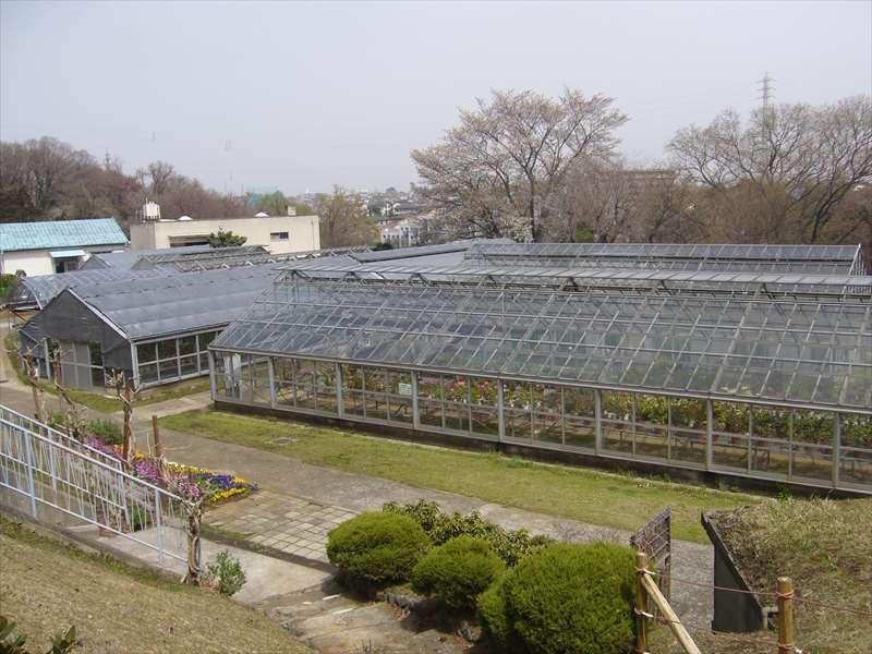花・野菜温室