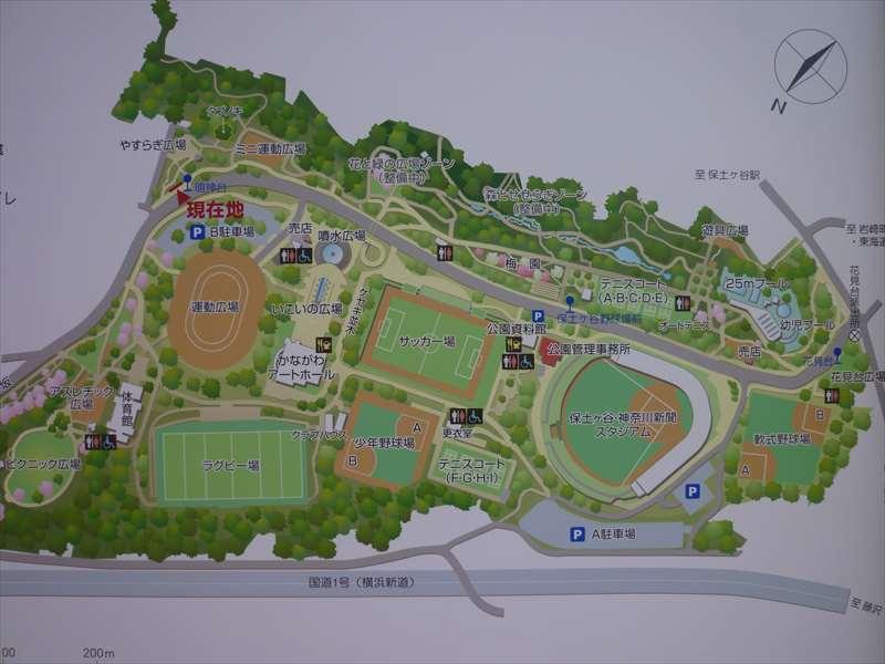 保土ヶ谷公園の案内図