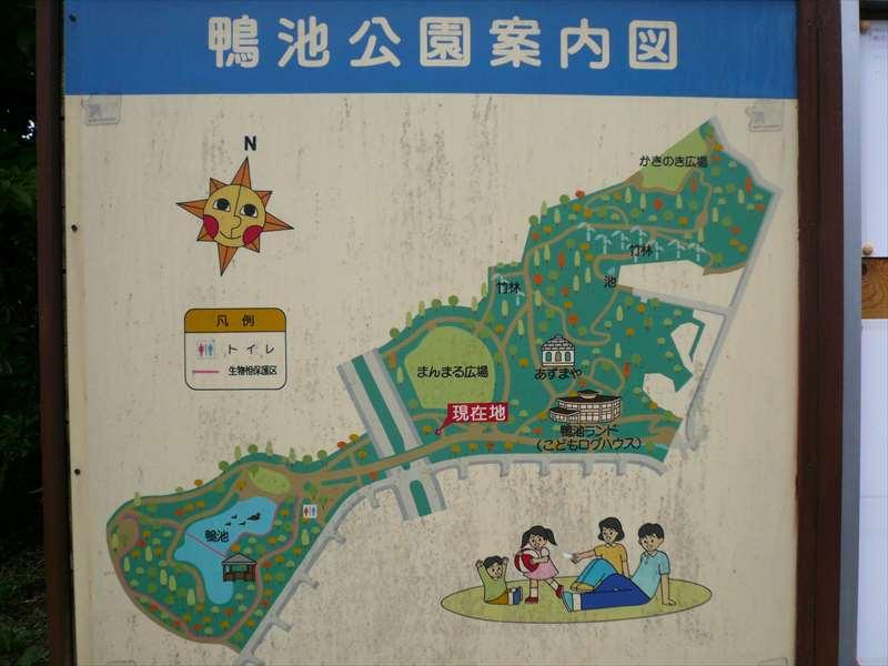 鴨池公園の案内図